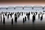 Pilings, Astoria–Megler Bridge, Columbia River, Oregon