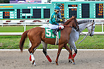 January 16, 2016: Eagle with Brian Joseph Hernandez up in the Louisiana Stakes race at the Fairgrounds race course in New Orleans Louisiana. Steve Dalmado/ESW/CSM