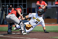 West Virginia Black Bears Brendt Citta (28) slides home and tagged out by catcher Dustin Skelton (6) during a NY-Penn League game against the Batavia Muckdogs on August 29, 2019 at Monongalia County Ballpark in Morgantown, New York.  West Virginia defeated Batavia 5-4 in ten innings.  (Mike Janes/Four Seam Images)