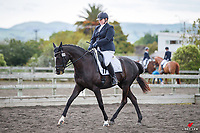 NZL-Hannah Gibson rides Jalyn Special Effects. 2020 NZL-AR Dressage & Kiwi Arena Rakes Premier League Show. Wellington Dressage Group. Solway Showgrounds, Masterton. Saturday 31 October 2020. Copyright Photo: Libby Law Photography