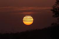 One incredible sunset at Sasan Gir in Gujarat, India