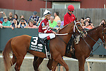 April 12, 2014: #3 Tapiture with jockey Joel Rosario aboard during post parade before the running of the Arkansas Derby at Oaklawn Park in Hot Springs, AR. Justin Manning/ESW/CSM