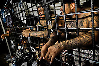 """Members of the 18th Street gang (M-18) stand behind the bars in a cell at the detention center in San Salvador, El Salvador, 20 February 2014. Although the country's two major gangs reached a truce in 2012, the police holding cells currently house more than 3000 inmates, five times more than the official built capacity. Partly because the ordinary Mara gang members did not break with their criminal activities (extortion, street-level distribution of drugs, etc.), partly because Salvadorean police still applies controversial anti-gang law which allows to detain almost anyone for """"suspicion of gang membership"""". Accused young men are held in police detention centers where up to 25 inmates may share a cell of five-by-five metres. Here, in the dark overcrowded cages, under harsh and life-threatening conditions, suspected gang members wait long months, sometimes years, for trial or for to be transported to a regular prison."""