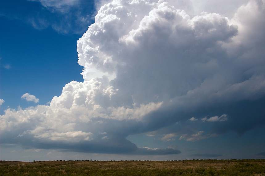 A developing cumulonimbus (supercell thunderstorm) rams it's silvery crowned top into the blue skies near Amarillo Texas in mid June.