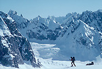 Alaska, Denali National Park, Climbers, telemark skiing, Great Gorge, Don Sheldon Amphitheater, Alaska Range, U.S.A., North America, Note the Climber is approaching Moose's Tooth which is out of the image camera left..