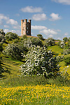 United Kingdom, England, Worcestershire, Broadway: Broadway Tower amidst spring flowering Hawthorn bushes and Buttercups | Grossbritannien, England, Worcestershire, Broadway: Broadway Tower, Fruehlingslandschaft mit Weißdornbueschen (Crataegus) und Butterblumen