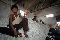 INDIA Madhya Pradesh, Kasrawad, children work in textile production units, ginning mill for cotton / INDIEN Kasrawad, Kinder arbeiten in Textilbetrieben, Entkernungsfabrik fuer Baumwolle, Kinder stopfen die Baumwolle in die Entkernungsmaschinen wo Faser und Samen voneinander getrennt werden