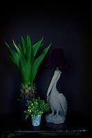 Houseplants and a lamp in the shape of a pelican with a purple shade are displayed on a table against a deep blue wall.