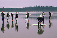 Long Beach, Pacific Rim National Park Reserve, Vancouver Island, BC, British Columbia, Canada - Group of Surfers carrying Surf Boards on Beach