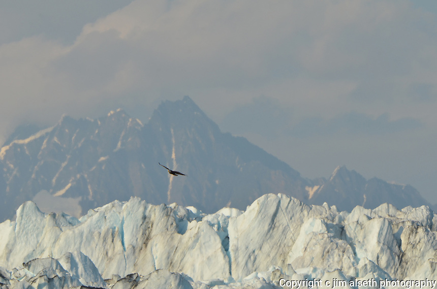 Scenes from our Alaska Inside Passage Cruise--Glacier Bay.