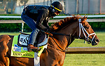 April 26, 2021: Known Agenda, trained by trainer Todd Pletcher, exercises in preparation for the Kentucky Derby at Churchill Downs on April 26, 2021 in Louisville, Kentucky. Scott Serio/Eclipse Sportswire/CSM