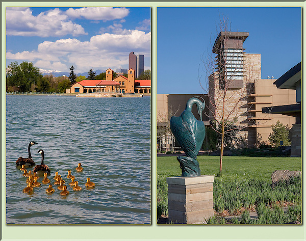 Canada geese at City Park and statue at The Wildlife Museum, Denver, Colorado