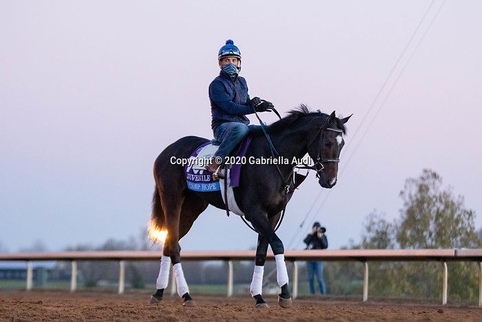 November 4, 2020: Camp Hope, trained by trainer Kenneth G. McPeek, exercises in preparation for the Breeders' Cup Juvenile at Keeneland Racetrack in Lexington, Kentucky on November 4, 2020. Gabriella Audi/Eclipse Sportswire/Breeder's Cup/CSM