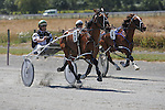 Marlborough Harness Racing, 23 January