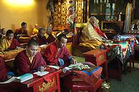 Buddhist monks at Gandantegchinlen Monastery
