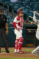 Palm Beach Cardinals catcher Carlos Soto (35) during a game against the Daytona Tortugas on May 4, 2021 at Roger Dean Chevrolet Stadium in Jupiter, Florida.  (Mike Janes/Four Seam Images)