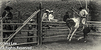 olf times Cowboys working and playing. Cowboy Cowboy Photo Cowboy, Cowboy and Cowgirl photographs of western ranches working with horses and cattle by western cowboy photographer Jess Lee. Photographing ranches big and small in Wyoming,Montana,Idaho,Oregon,Colorado,Nevada,Arizona,Utah,New Mexico. Fine Art Limited Edition Photography Of American Cowboys and Cowgirls by Jess Lee