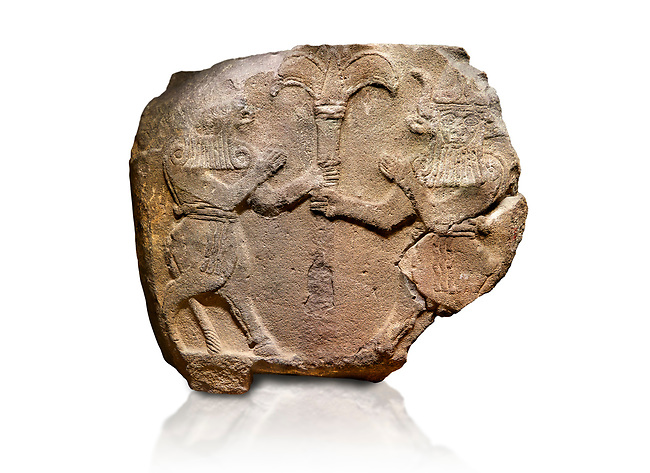 Hittite monumental relief sculpted orthostat stone panel from Water Gate Basalt, Karkamıs, (Kargamıs), Carchemish (Karkemish), 900-700 B.C.  Anatolian Civilisations Museum, Ankara, Turkey.<br /> <br /> Two bull-men holding the trunk of the tree in the middle. The faces of the figures, having tufts in both temples over the chain, have been depicted from the front direction. The horned figures with bull-like ears and legs have human bodies. <br /> <br /> On a white background.