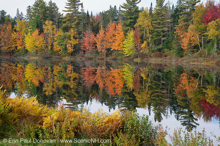 Pontook Reservoir on the Androscoggin River along Route 16 in Dummer, New Hampshire USA during the autumn months.