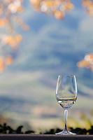South Africa.  Wine Tasting at Delaire Graff Estate Winery, near Stellenbosch.