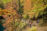 Europa, DEU, Deutschland, Baden Wuerttemberg, Schwaebische Alb, Blautal, Blaubeuren, Quelle, Blau, Karstquelle, Blautopf, Herbst, Herbstliche Farben, Blattverfaerbung, Touristen, Urlauber, Kategorien und Themen, Natur, Umwelt, Landschaft, Jahreszeiten, Stimmungen, Landschaftsfotografie, Landschaften, Landschaftsphoto, Landschaftsphotographie, Tourismus, Touristik, Touristisch, Touristisches, Urlaub, Reisen, Reisen, Ferien, Urlaubsreise, Freizeit, Reise, Reiseziele, Ferienziele....[Fuer die Nutzung gelten die jeweils gueltigen Allgemeinen Liefer-und Geschaeftsbedingungen. Nutzung nur gegen Verwendungsmeldung und Nachweis. Download der AGB unter http://www.image-box.com oder werden auf Anfrage zugesendet. Freigabe ist vorher erforderlich. Jede Nutzung des Fotos ist honorarpflichtig gemaess derzeit gueltiger MFM Liste - Kontakt, Uwe Schmid-Fotografie, Duisburg, Tel. (+49).2065.677997, ..archiv@image-box.com, www.image-box.com]