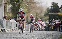 John DEGENKOLB (DEU/Trek-Segafredo) up the Kruisberg<br /> <br /> 103rd Ronde van Vlaanderen 2019<br /> One day race from Antwerp to Oudenaarde (BEL/270km)<br /> <br /> ©kramon
