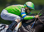 June 7, 2014: Global Power, ridden by Jacob Radosevich, runs in the 31st running of The Jaipur Invitational on Belmont Stakes Day in Elmont, NY. Jon Durr/ESW/CSM