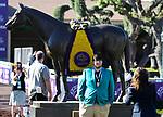 November 1, 2019 : Scenes from Breeders' Cup Championship Friday at Santa Anita Park in Arcadia, California on November 1, 2019. Bill Denver/Eclipse Sportswire/Breeders' Cup/CSM