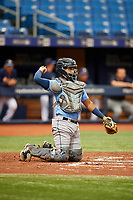 Kevin Melendez (14) throws back to the pitcher during the Tampa Bay Rays Instructional League Intrasquad World Series game on October 3, 2018 at the Tropicana Field in St. Petersburg, Florida.  (Mike Janes/Four Seam Images)