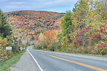 Canada, Quebec, Eastern Townships, Country Road with Autumn Color
