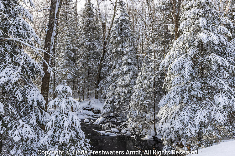 A peaceful winter scene in northern Wisconsin.
