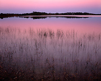 Sunet glow on Nine-Mile Pond; Everglades National Park, FL