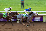 November 6, 2020: Essential Quality, ridden by Luis Saez, wins the TVG Juvenile Presented By Thoroughbred Aftercare Alliance on Breeders' Cup Championship Friday at Keeneland on November 6, 2020: in Lexington, Kentucky. Scott Serio/Eclipse Sportswire/Breeders Cup/CSM