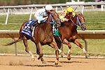 July 12, 2014: Galiana, Abel Lezcano up, wins the Sweet and Sassy Stakes at Delaware Park in Stanton Delaware. Trainer is Rodolfo Romero; owner is WinStar Farm' Joan Fairman Kanes/ESW/CSM