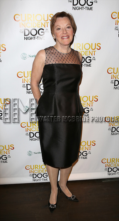 Helen Carey attends the Broadway Opening Night Performance After Party for 'The Curious Incident of the Dog in the Night-Time'  at Urbo on October 5, 2014 in New York City.