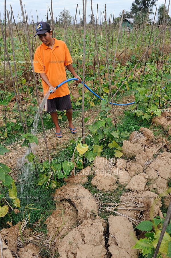 Laos, farmer irrigate cucumber plants, which he is planting after paddy harvest on the field, irrigation / LAOS, Dist. Vientiane , Dorf Ban Nasala, Reisfarmer Phao Mamugda baut nach Reisernte Gurken als Zwischenfrucht an, Bewaesserung