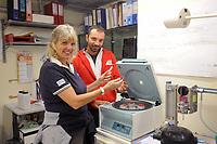 - Acquario di Genova, la dottoressa Claudia Gili, direttore scientifico dei Servizi Veterinari, con un collaboratore.<br /> <br /> - The Aquarium of Genoa (Italy), Dr Claudia Gili, scientific director of the Veterinary Services, with an assistant.