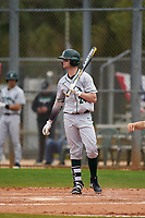 Dartmouth Big Green Kade Kretzschmar (24) bats during a game against the Indiana State Sycamores on February 21, 2020 at North Charlotte Regional Park in Port Charlotte, Florida.  Indiana State defeated Dartmouth 1-0.  (Mike Janes/Four Seam Images)