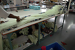 A worker cutting the long cloth at Srinidhi garment factory. After dying the long cloths they are send to cutting units   Tirupur, Tamilnadu. After lifting of quota system in textile export on 1st january 2005. Tirupur has become the biggest foreign currency earning town of India.
