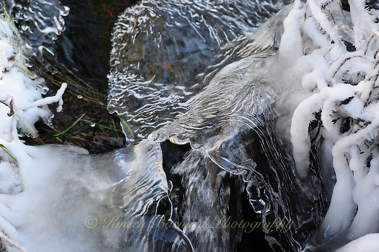 """""""ICE FORMS-6""""<br /> <br /> Natural designs and patterns in ice."""