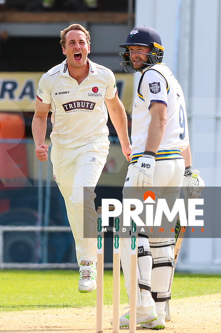 Josh Davey of Somerset celebrates taking the Wicket of Adam Lyth after he is caught in slip by Marcus Trescothick of Somerset during the 2nd day Specsavers County Championship match between Yorkshire and Somerset at Headingley Cricket Ground, St Michaels Lane, England on 30 August 2018. Photo by Thomas Gadd.