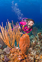 25 July 2015: SCUBA Diver Sally Herschorn explores the formations of sponges at Lemon Reef, on the North side of Grand Cayman Island. Located in the British West Indies in the Caribbean, the Cayman Islands are renowned for excellent scuba diving, snorkeling, beaches and banking.  Mandatory Credit: Ed Wolfstein Photo *** RAW (NEF) Image File Available ***