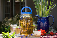 Herb mint sun tea brewing on picnic table