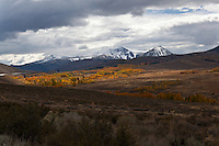 Sagebrush, cloud-capped peaks and golden aspen, glowing - epitome of a Sierra Nevada autumn.