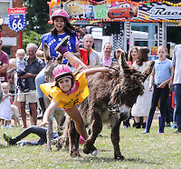 Theydon Bois 28th Donkey Derby - 05/07/2015
