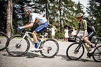 Alejandro Valverde (ESP/Movistar) & Adam Yates (GBR/Mitchelton-Scott)<br /> <br /> Stage 5: Megève to Megève (154km)<br /> 72st Critérium du Dauphiné 2020 (2.UWT)<br /> <br /> ©kramon
