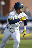 Michigan Wolverines designated hitter Jordan Nwogu (42) runs to first base against the San Jose State Spartans on March 27, 2019 in Game 1 of the NCAA baseball doubleheader at Ray Fisher Stadium in Ann Arbor, Michigan. Michigan defeated San Jose State 1-0. (Andrew Woolley/Four Seam Images)
