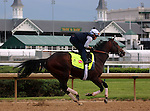 LOUISVILLE, KY - MAY 04: Shagaf (Bernardini x Muhaawara, by Unbridled's Song) gallops at Churchill Downs, Louisville KY with exercise rider Gian Cueva. He is pointed toward the Kentucky Derby. Owner Shadwell Stable, trainer Chad C. Brown. (Photo by Mary M. Meek/Eclipse Sportswire/Getty Images)