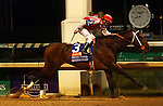 June 14, 2014: MOONSHINE MULLIN wins the G1 Stephen Foster with jockey Calvin Borel.  He is owned by Randy Patterson and trained by Randy L. Morse.  ©Mary M. Meek/ESW/CSM