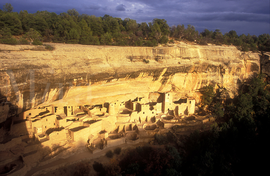 USA, Colorado, Mesa Verde National Park, Cliff Palace, cliff dwellings of the Anasazi A.D. 1200